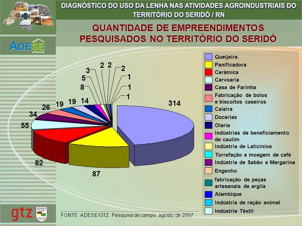 QUANTIDADE DE EMPREENDIMENTOS PESQUISADOS NO TERRITÓRIO DO SERIDÓ
