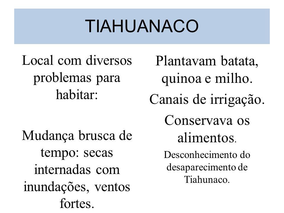 TIAHUANACO Plantavam batata, quinoa e milho. Canais de irrigação.