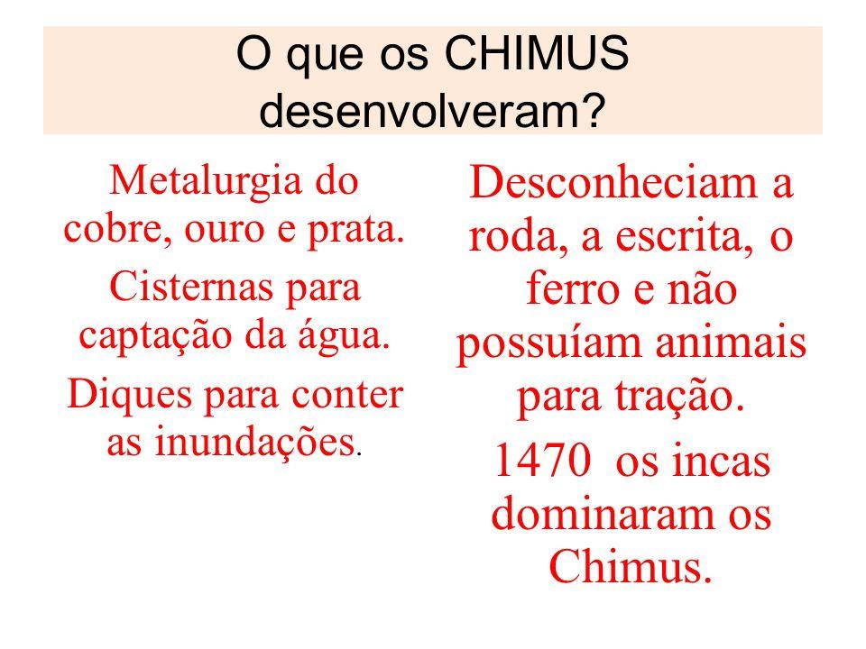 O que os CHIMUS desenvolveram