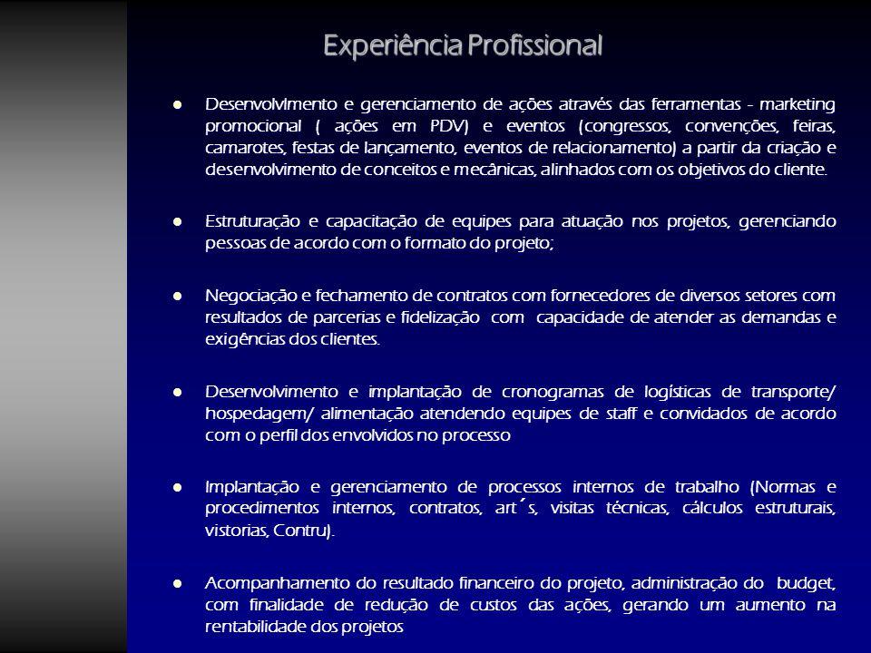 Experiência Profissional