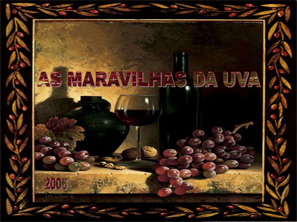 AS MARAVILHAS DA UVA 2006
