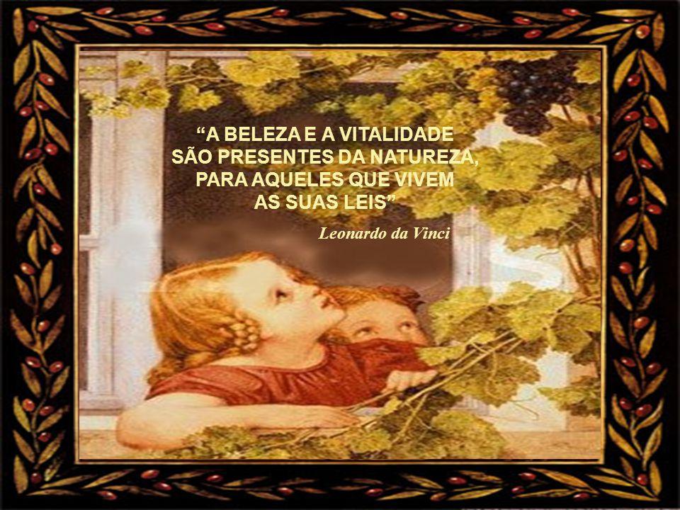A BELEZA E A VITALIDADE SÃO PRESENTES DA NATUREZA,