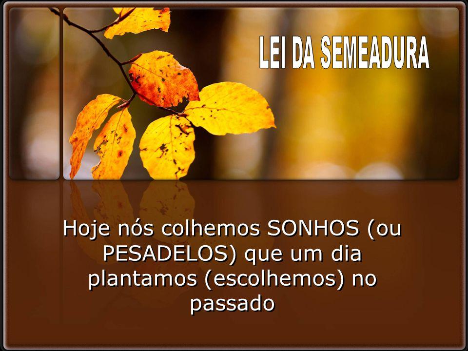 LEI DA SEMEADURA Hoje nós colhemos SONHOS (ou PESADELOS) que um dia plantamos (escolhemos) no passado.
