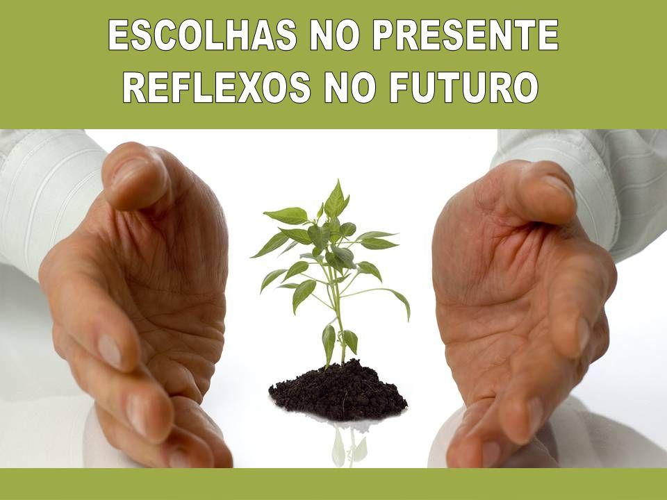 ESCOLHAS NO PRESENTE REFLEXOS NO FUTURO
