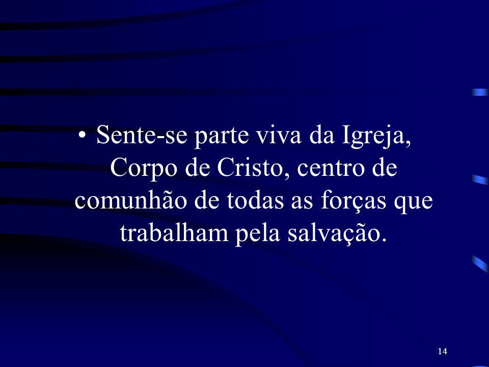 Sente-se parte viva da Igreja, Corpo de Cristo, centro de comunhão de todas as forças que trabalham pela salvação.