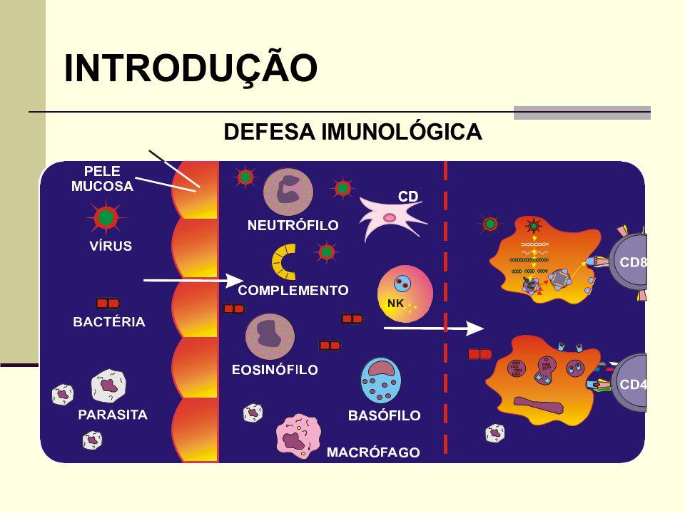 INTRODUÇÃO DEFESA IMUNOLÓGICA PAREDE DE VASO CD 2