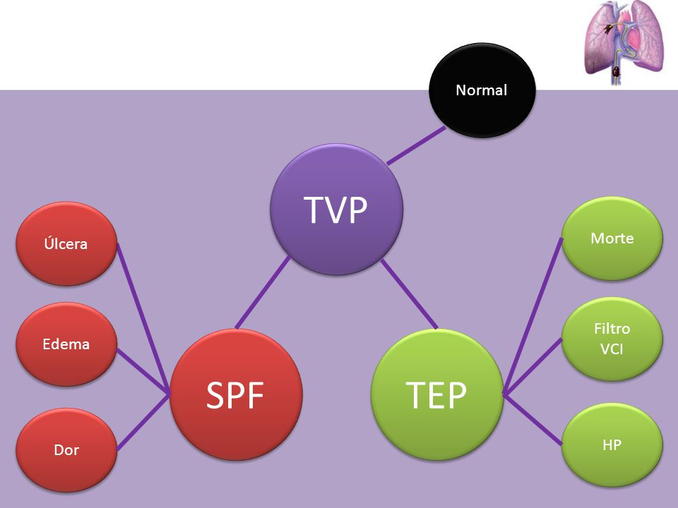 Normal TVP Morte Úlcera Filtro VCI Edema SPF TEP HP Dor