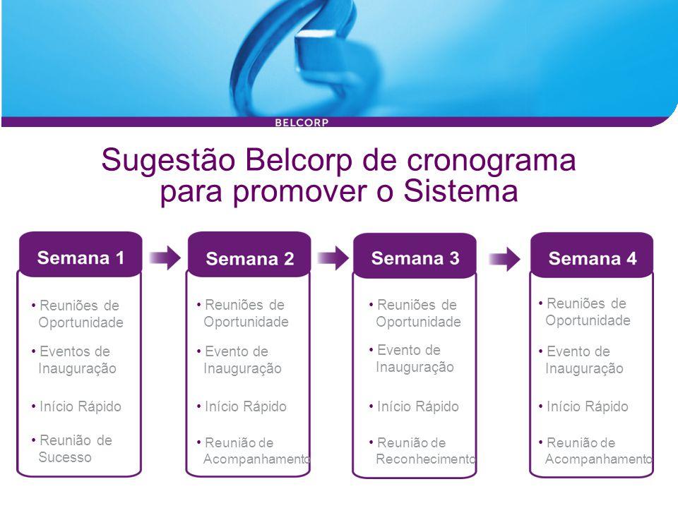 Sugestão Belcorp de cronograma para promover o Sistema