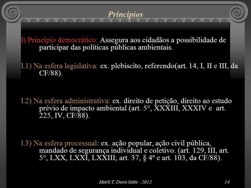 Princípios l) Princípio democrático: Assegura aos cidadãos a possibilidade de participar das políticas públicas ambientais.