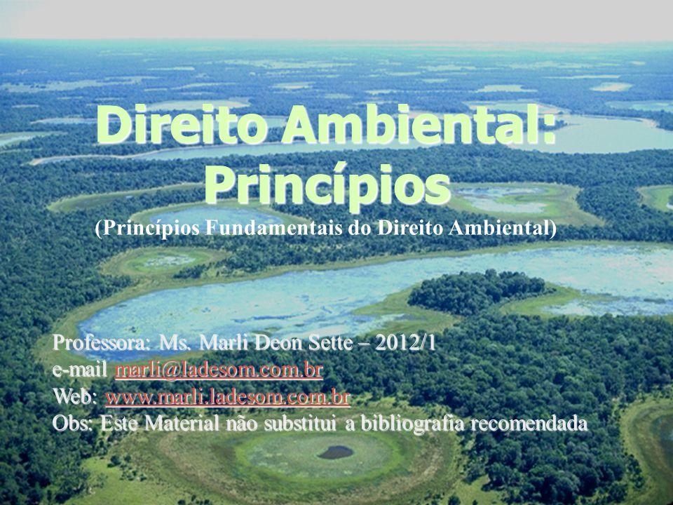 (Princípios Fundamentais do Direito Ambiental)