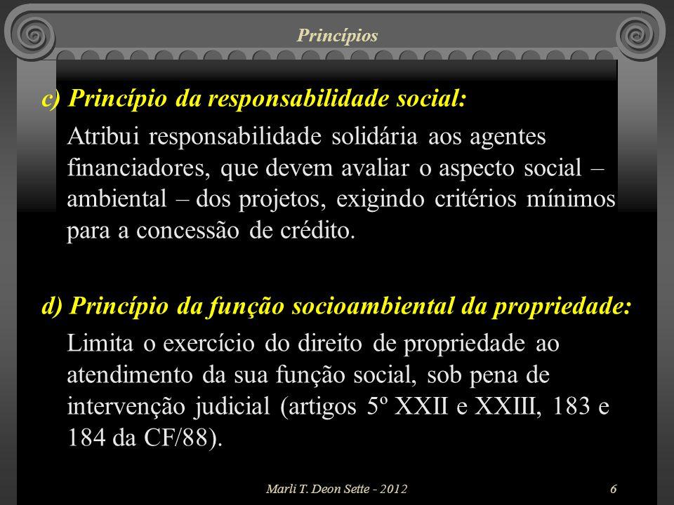 c) Princípio da responsabilidade social: