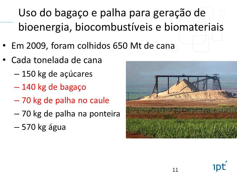 Uso do bagaço e palha para geração de bioenergia, biocombustíveis e biomateriais