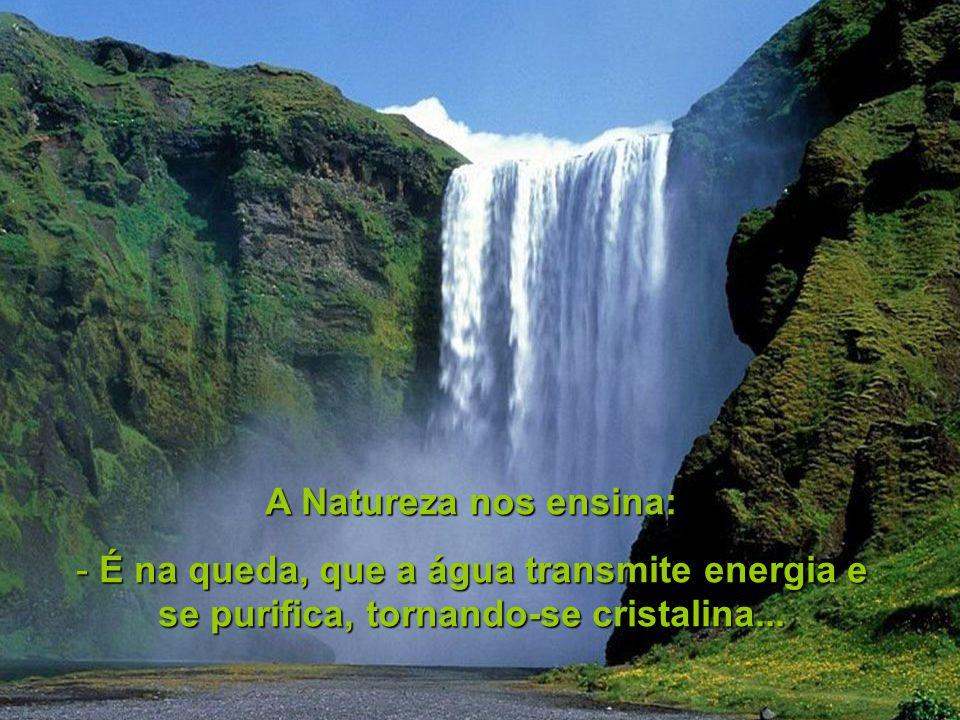 A Natureza nos ensina: É na queda, que a água transmite energia e se purifica, tornando-se cristalina...