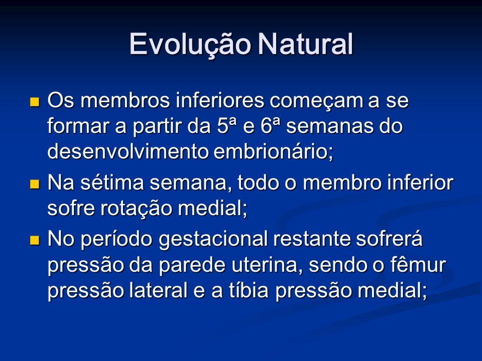 Evolução Natural Os membros inferiores começam a se formar a partir da 5ª e 6ª semanas do desenvolvimento embrionário;