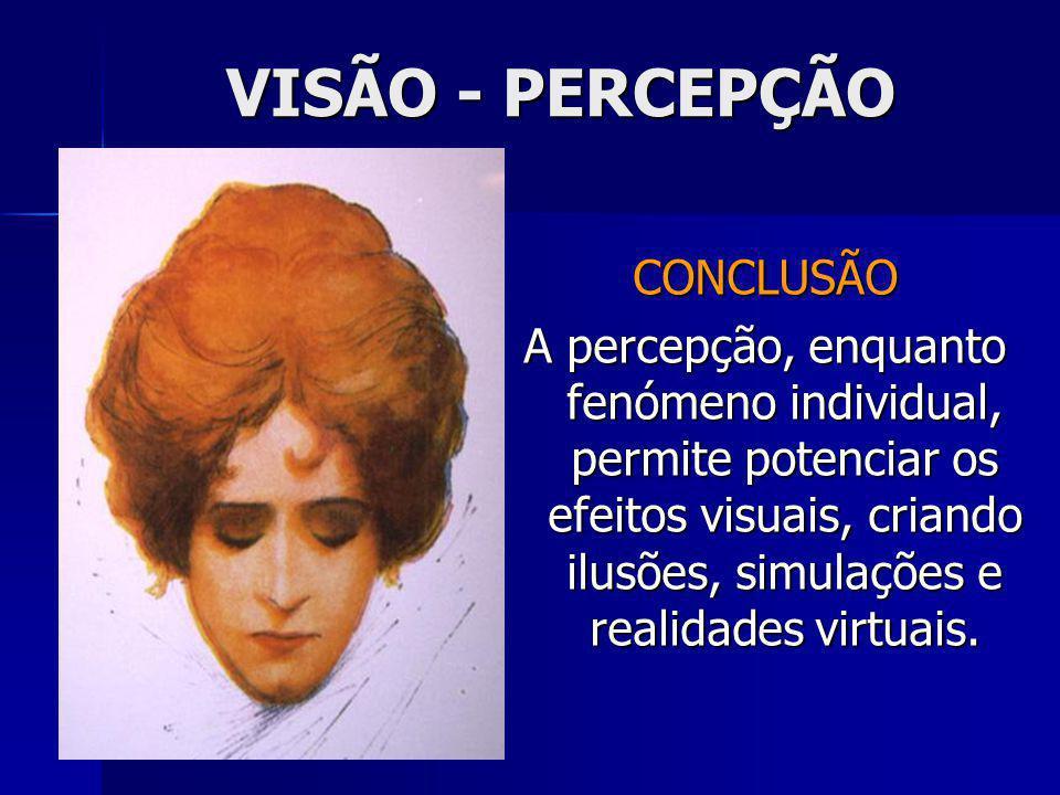 VISÃO - PERCEPÇÃO CONCLUSÃO