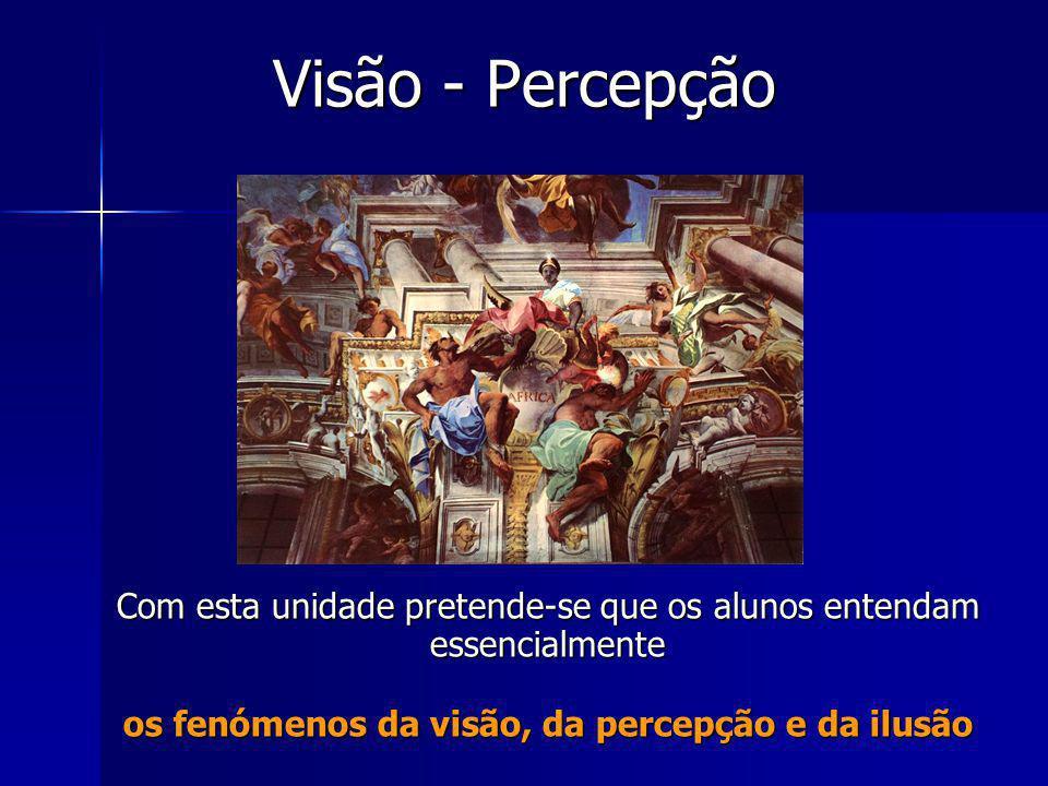 os fenómenos da visão, da percepção e da ilusão