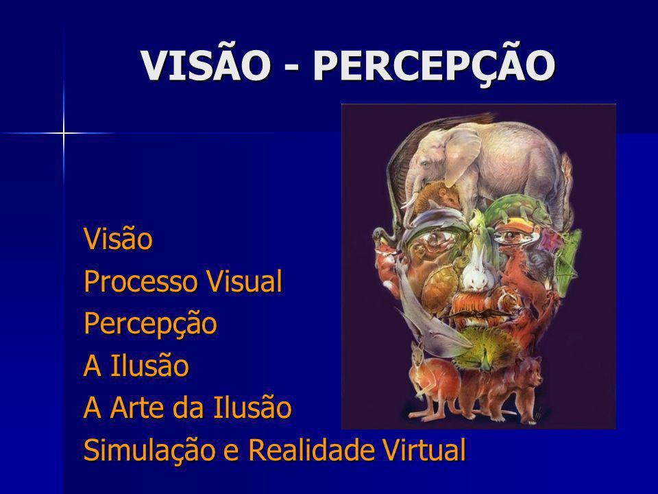 VISÃO - PERCEPÇÃO Visão Processo Visual Percepção A Ilusão