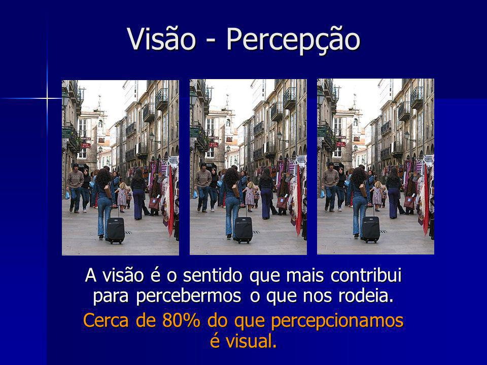 Cerca de 80% do que percepcionamos é visual.