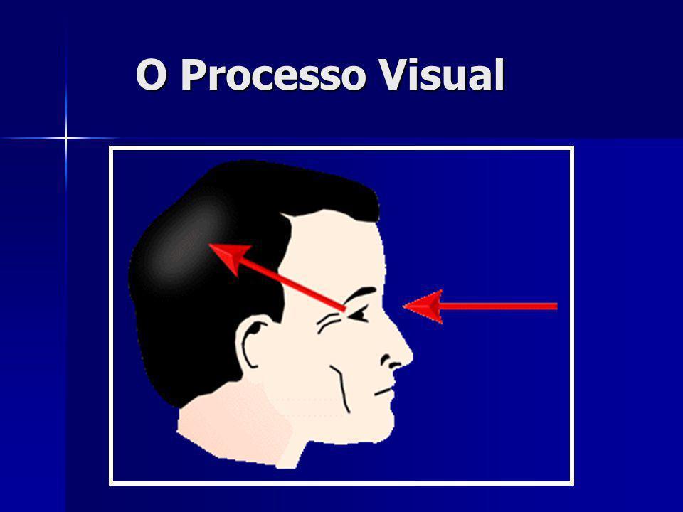 O Processo Visual