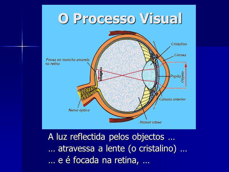 O Processo Visual A luz reflectida pelos objectos …