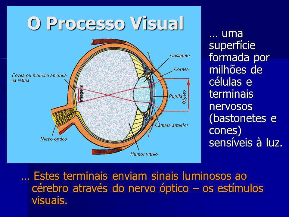 O Processo Visual … uma superfície formada por milhões de células e terminais nervosos (bastonetes e cones) sensíveis à luz.