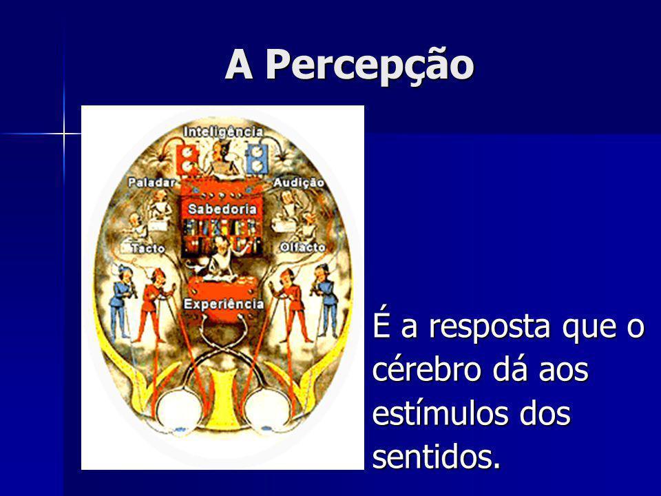 A Percepção É a resposta que o cérebro dá aos estímulos dos sentidos.