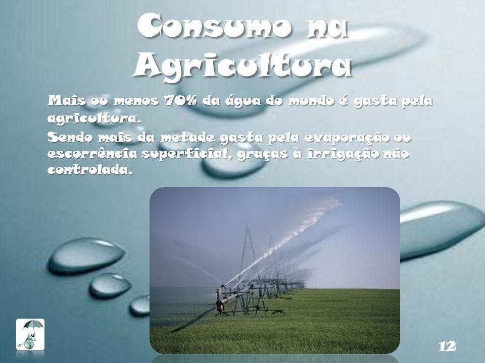 Consumo na Agricultura