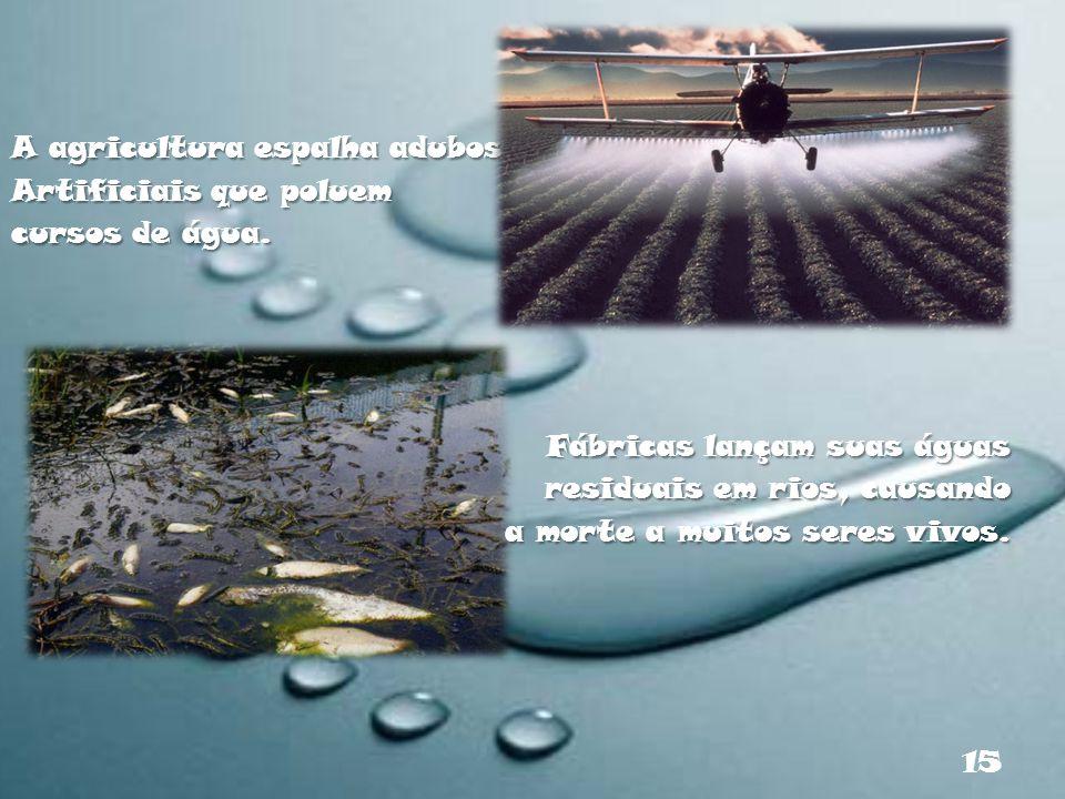 A agricultura espalha adubos Artificiais que poluem cursos de água