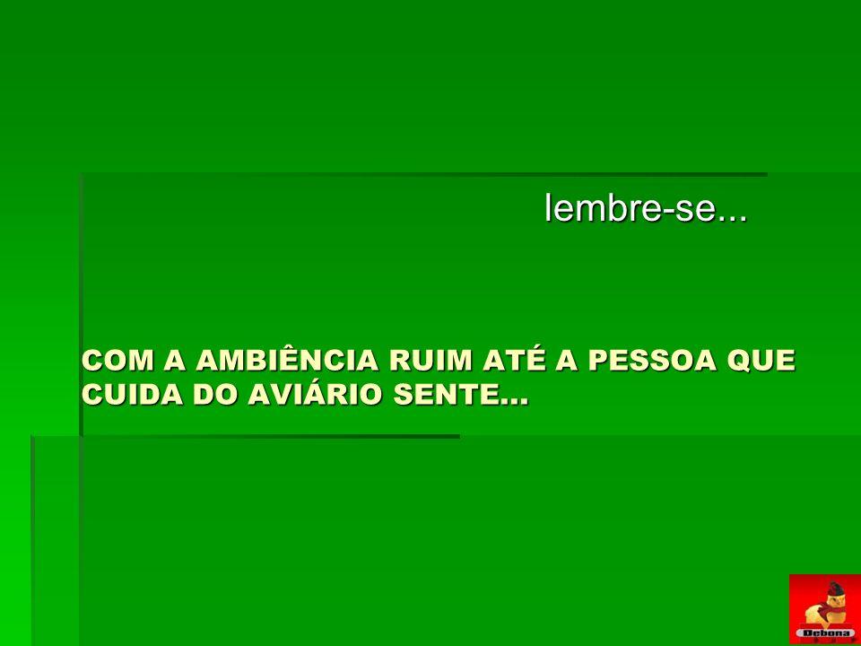 COM A AMBIÊNCIA RUIM ATÉ A PESSOA QUE CUIDA DO AVIÁRIO SENTE...