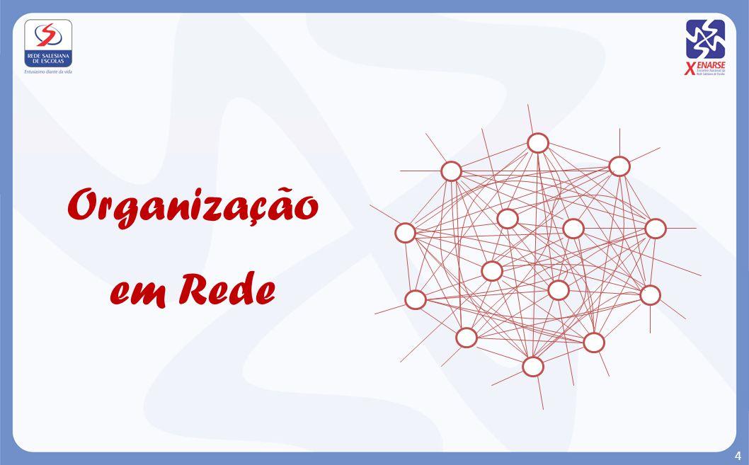 Organização em Rede