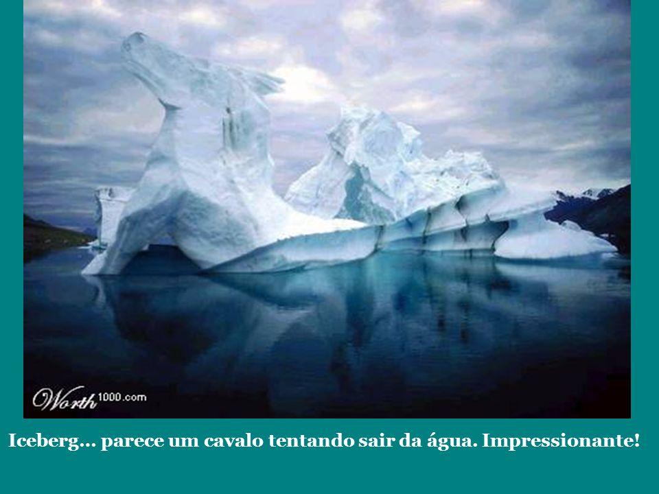 Iceberg… parece um cavalo tentando sair da água. Impressionante!