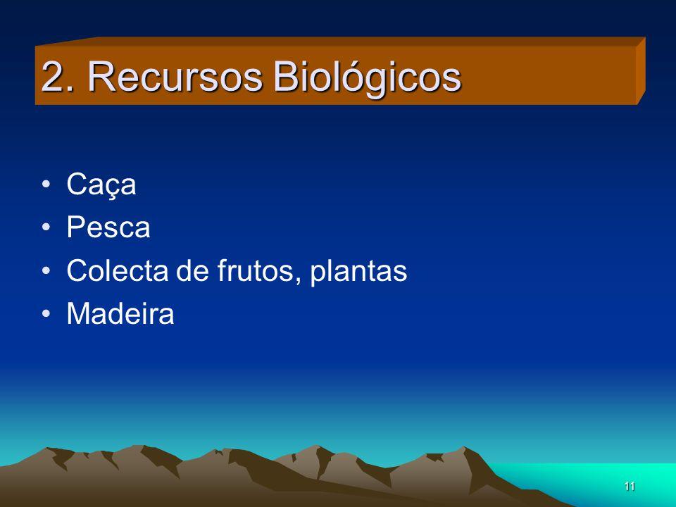 2. Recursos Biológicos Caça Pesca Colecta de frutos, plantas Madeira