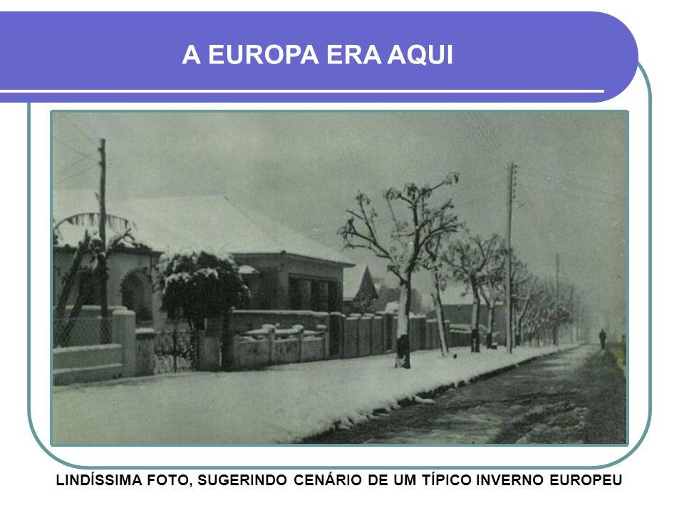 LINDÍSSIMA FOTO, SUGERINDO CENÁRIO DE UM TÍPICO INVERNO EUROPEU