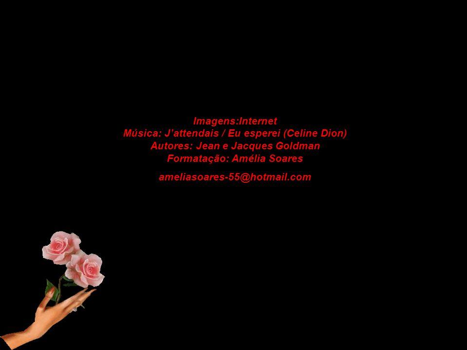 Imagens:Internet Música: J'attendais / Eu esperei (Celine Dion) Autores: Jean e Jacques Goldman Formatação: Amélia Soares