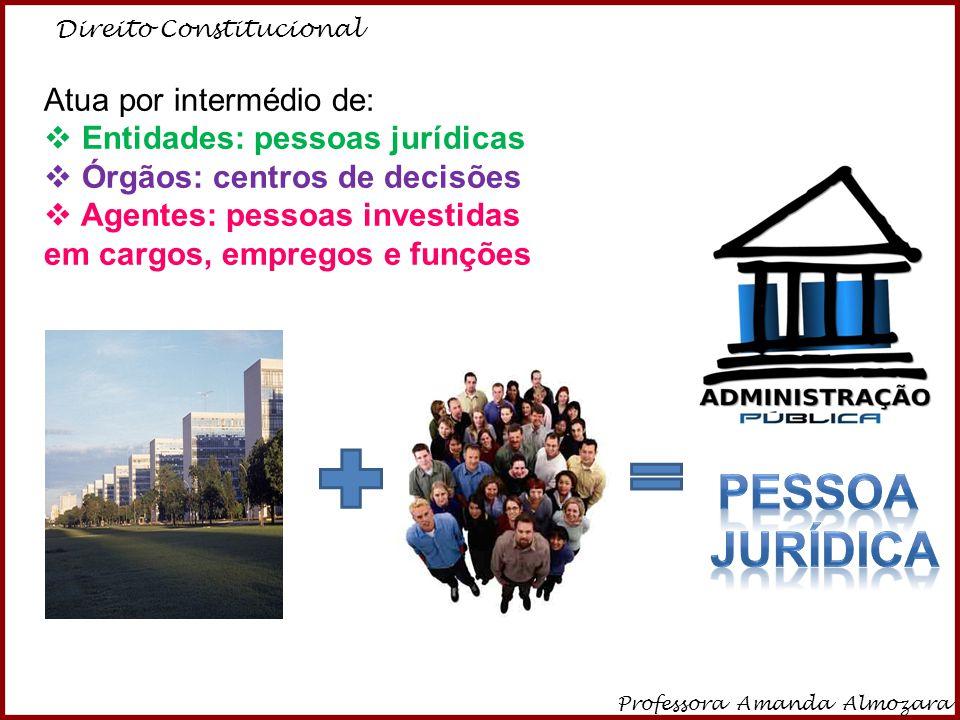Pessoa jurídica Atua por intermédio de: Entidades: pessoas jurídicas