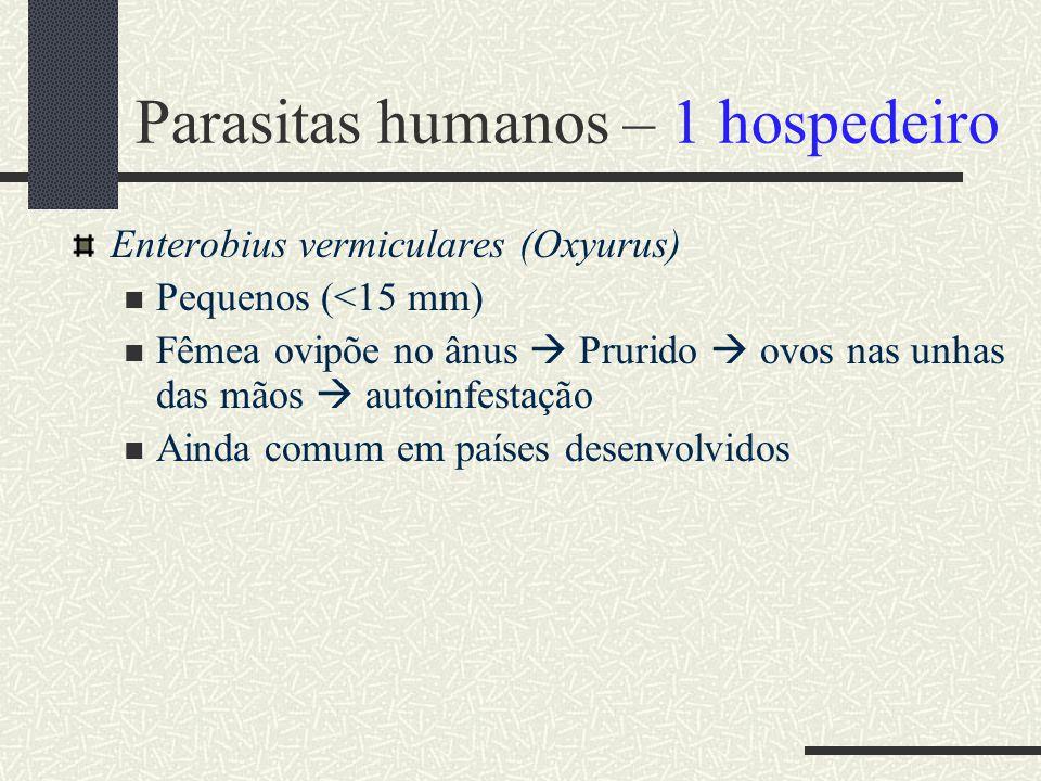 Parasitas humanos – 1 hospedeiro