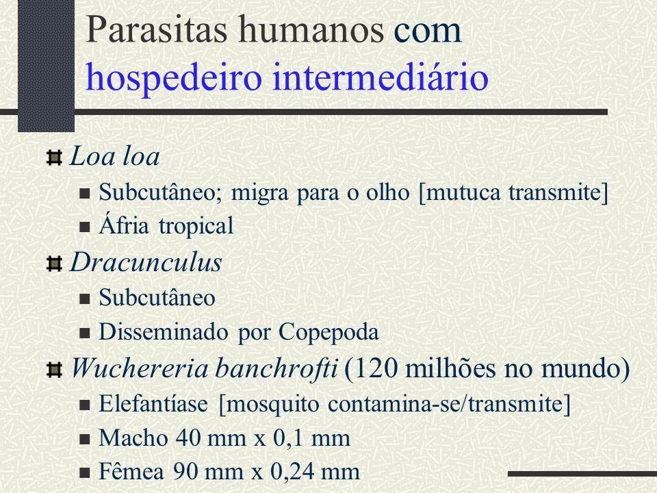 Parasitas humanos com hospedeiro intermediário