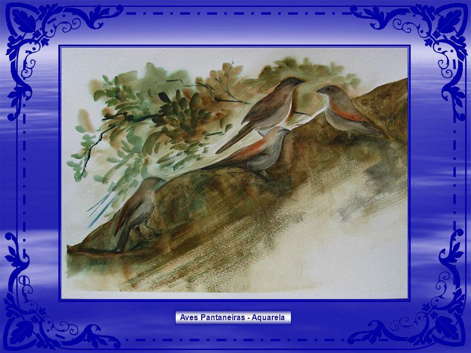 Aves Pantaneiras - Aquarela