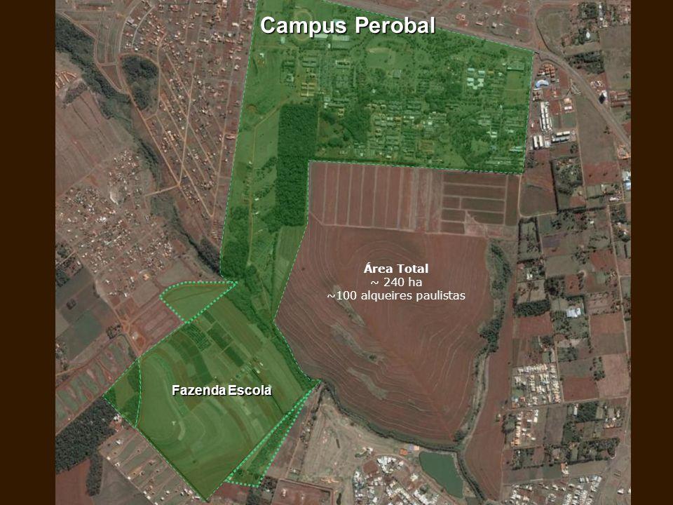 Área Total ~ 240 ha ~100 alqueires paulistas
