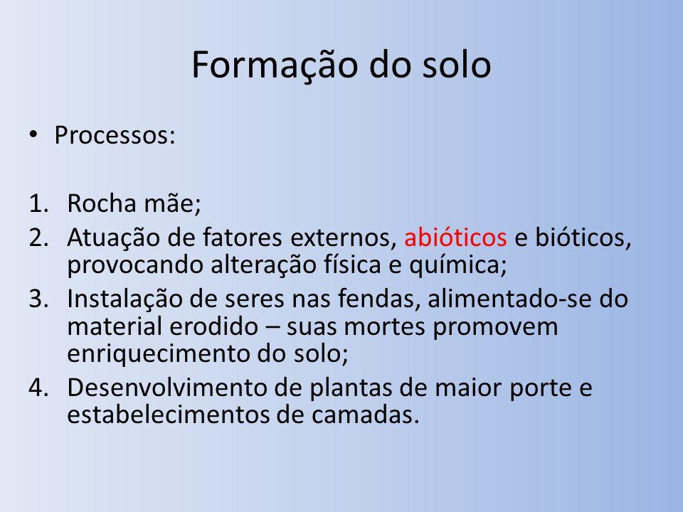 Formação do solo Processos: Rocha mãe;