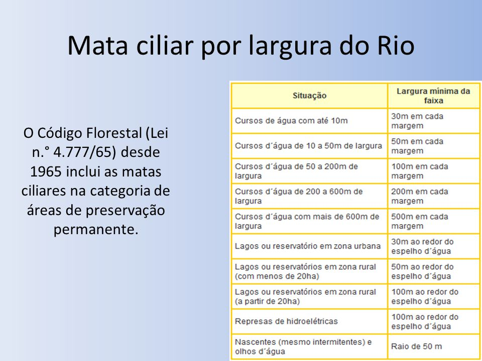 Mata ciliar por largura do Rio