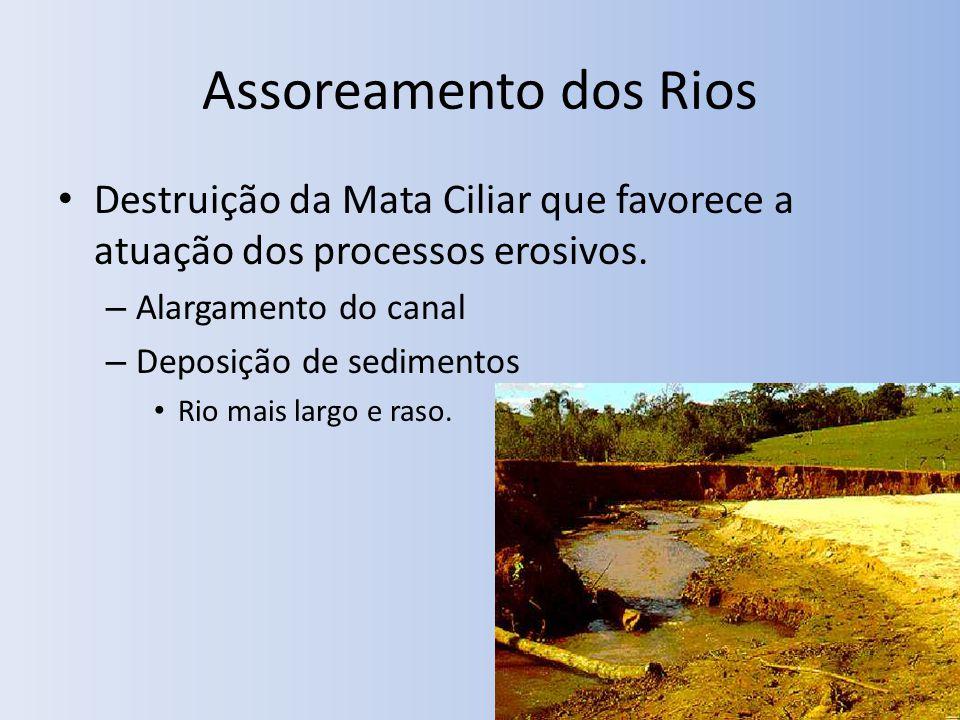 Assoreamento dos Rios Destruição da Mata Ciliar que favorece a atuação dos processos erosivos. Alargamento do canal.
