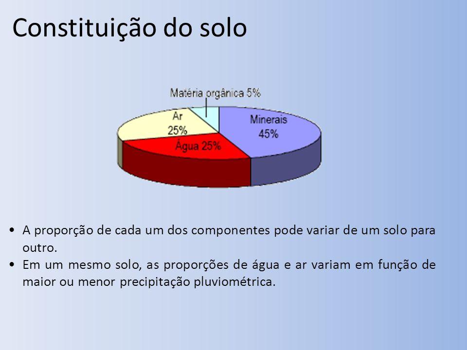 Constituição do solo A proporção de cada um dos componentes pode variar de um solo para outro.