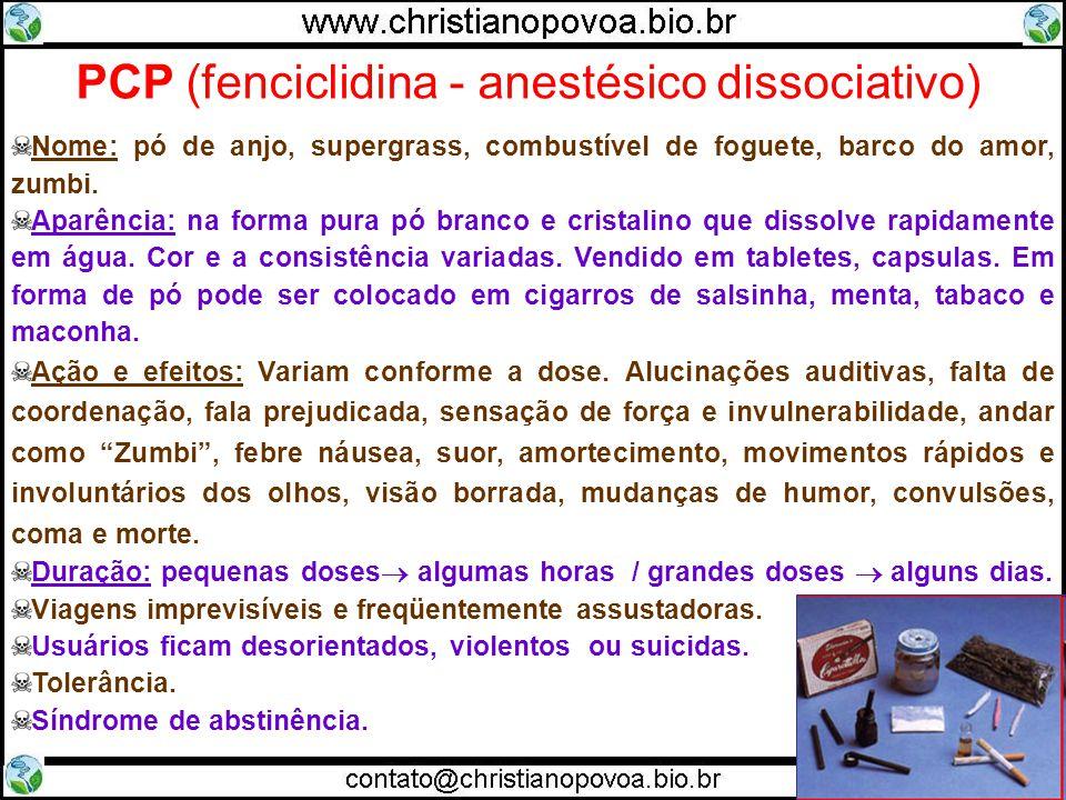 PCP (fenciclidina - anestésico dissociativo)