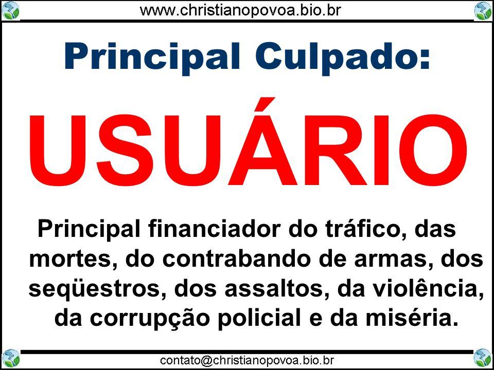 USUÁRIO Principal Culpado: