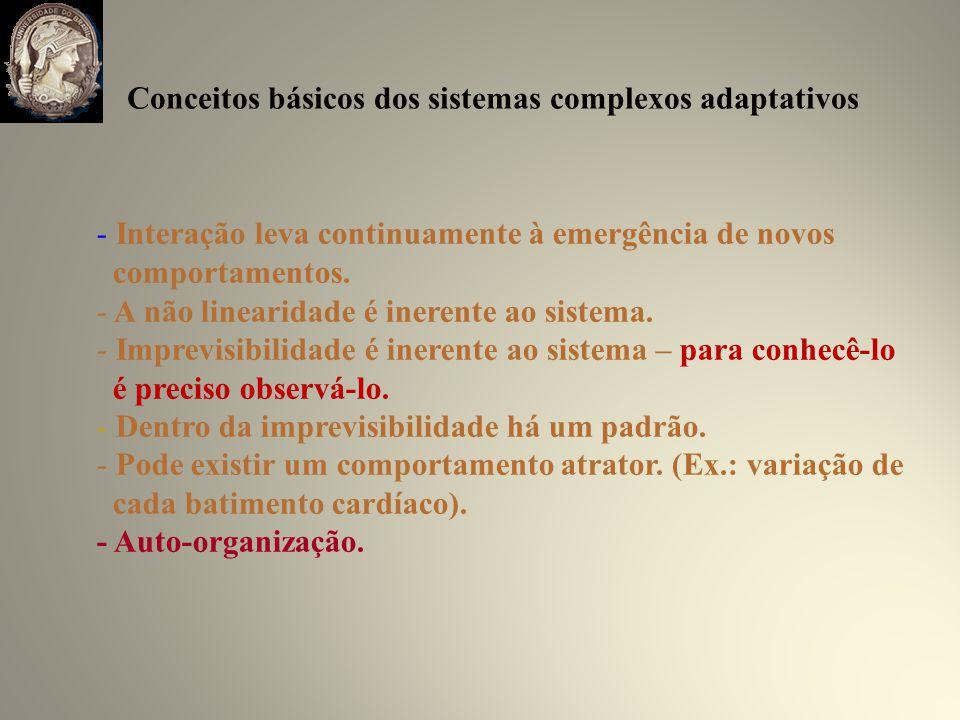 Conceitos básicos dos sistemas complexos adaptativos