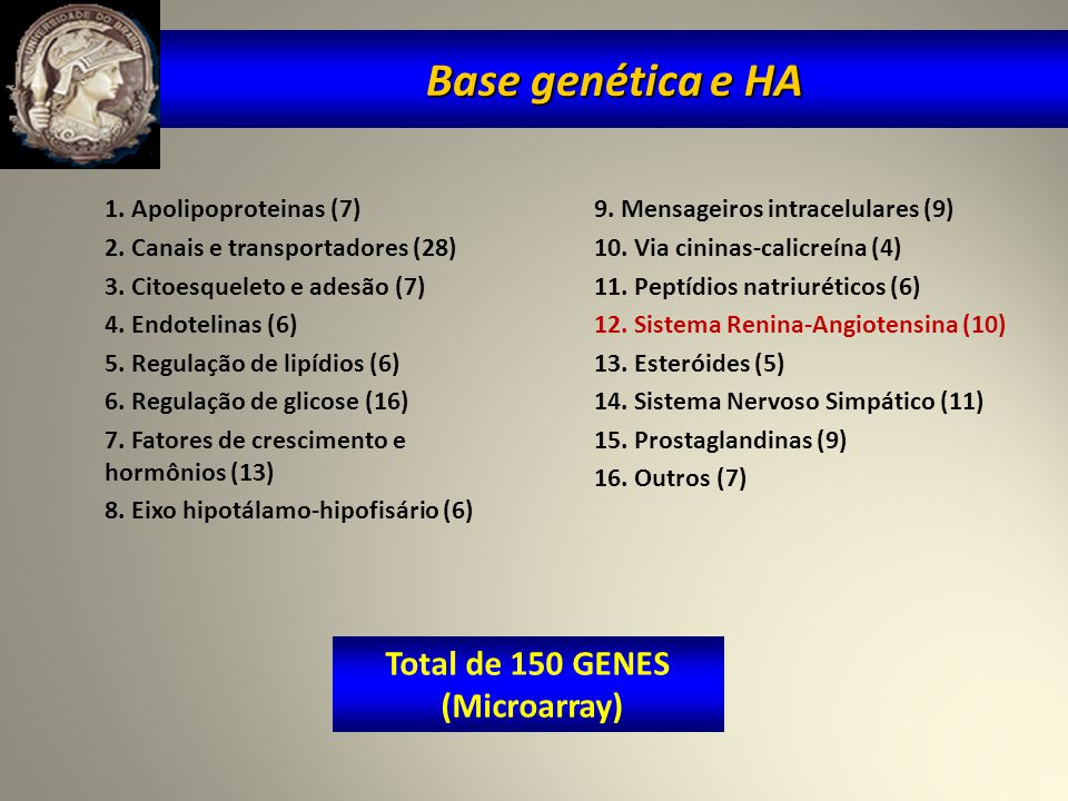 Número de genes relacionados à Hipertensão por Classes Funcionais