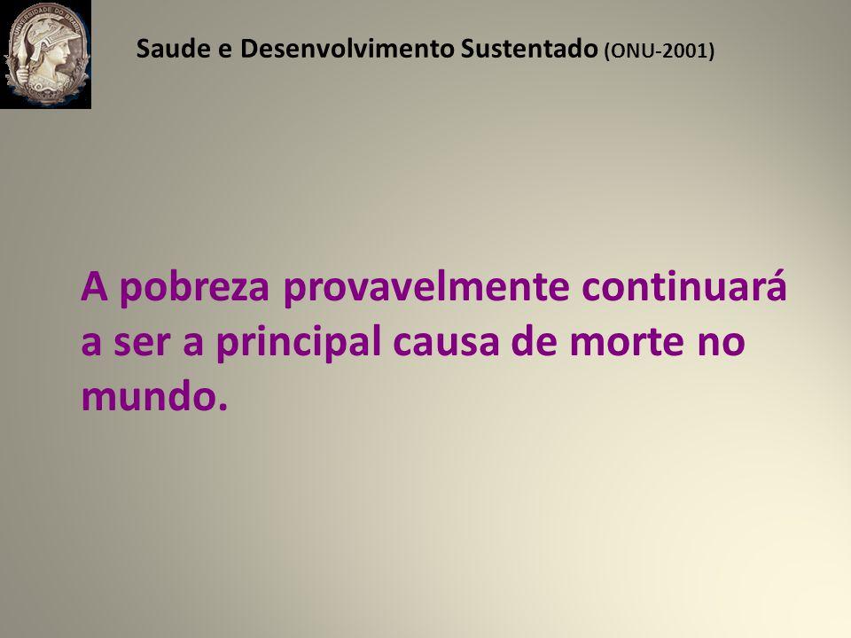 Saude e Desenvolvimento Sustentado (ONU-2001)