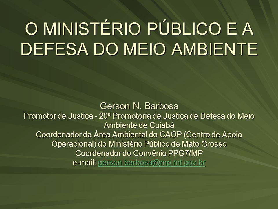 O MINISTÉRIO PÚBLICO E A DEFESA DO MEIO AMBIENTE Gerson N