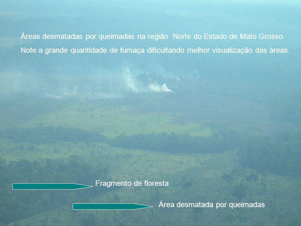 Áreas desmatadas por queimadas na região Norte do Estado de Mato Grosso.